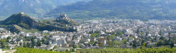 First Biosolar Roof in Sion – part of the Acclimatisation Programme